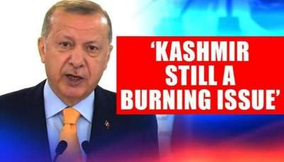 Turkish President Erdogan and Question of Kashmir at UNGA by Aroosa Hafeez
